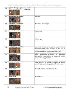 CENTRO DE ESTUDIO E INVESTIGACIÓN DE BIOMAGNETISMO HOLÍSTICO Y TÉCNICAS BIOENERGÉTICAS PARA EL DESARROLLO HUMANO A.C. 30 C...