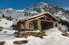 """ A winter perfume... "" by Sierra70. Please Like http://fb.me/go4photos and Follow @go4fotos Thank You. :-)"