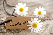 Gratitude is one of the most powerful energies and emotional states we can  experience. Here are some of the specific benefits of gratitude and  appreciation.