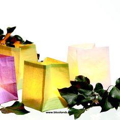 Quelques berlingos, un peu de nature... et le tour est joué ! Créez vos propres décorations avec nos photophores.