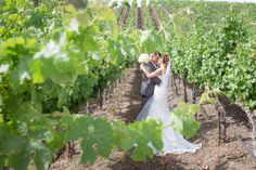 Julie & Corey || Léal Vineyards || Hollister, CA || Photo by Vanessa Hicks