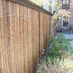 Contemporary Bamboo Fence