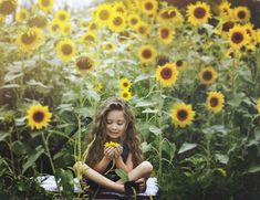 Sunflower field, natural light photographers, toddler photography, 5 year old ph. - Clicked by Catrina - Photopraphy
