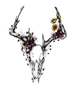 Animal Skulls - Hannah Horn