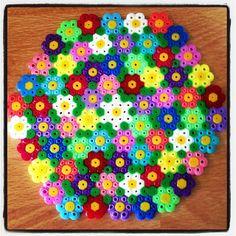 Spring coaster hama beads by tutluva
