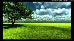 Jon Kabat Zinn Guided Meditation Walking Meditation - Series 3 Part 8