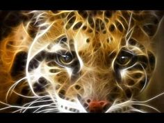 Animals Fractals Wild Cat Leopards Whiskers X Wallpaper Www 3d Wallpaper Tiger, Animal Wallpaper, Fractal Images, Fractal Art, Native American Music, Leopards, Deviantart, Animal Drawings, Abstract Drawings