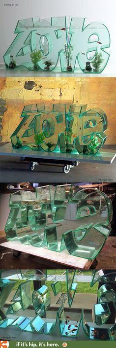 The Lovefish tank. #fishtank #lovefish #aquarium