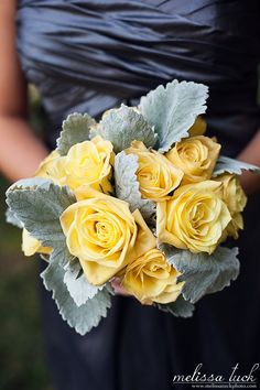 Melissa Tuck Photography Blog » LOVE this bouquet - only with pale pink or white roses.  the lamb's ear is perfect.