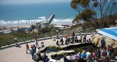 BIRCH AQUARIUM AT SCRIPPS: 2300 Expedition Way, La Jolla, CA 92037   This aquarium is the public exploration center for the world-renowned Scripps Institution of Oceanography at UC San Diego. Perched on a bluff overlooking the Pacific Ocean, the aquarium features more than 60 habitats of fishes & invertebrates, showcases research discoveries on climate, earth & ocean science and includes 5 dozen interactive elements. Exhibits: Living Tide Pools Elasmo Beach, Kelp Forest, Seahorses & more...
