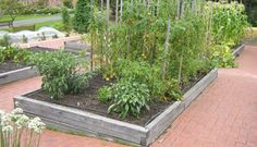 6-bed vegetable garden rotation plan