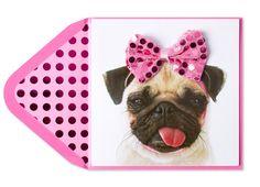 Puppy Love: Adorable Valentine Pet Costumes