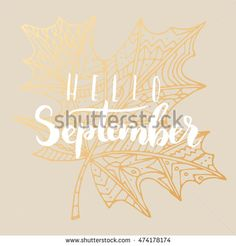 """Elegant vector """"Hello September"""" quote. Hipster calligraphic phrase. Leaves…"""