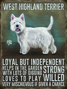 Vintage Style Metal Wall Kitchen Sign Retro West Highland Terrier Dog Lover Gift #ebay #Home & Garden