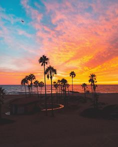 Colourful sunset at Venice Beach, Los Angeles, California. Pretty Sky, Beautiful Sky, Beautiful Places, Beach Photos, Cool Photos, San Diego, Wanderlust, City Of Angels, California Dreamin'