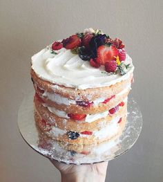 """6"""" naked cake, hand for scale  the haphazard dusting of powdered sugar is my favorite part. #matchboxkitchen #matchboxkitchencakes"""