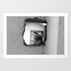 a sparrow Art Print by Ajinkya Pawar - $18.00