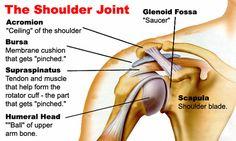 Climbing Shoulder Injuries - Exercises & Tips