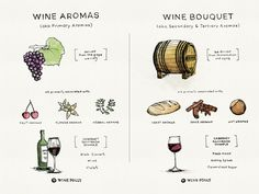 The terms wine aroma and wine bouquet are not exactly scientific but they can be useful to classify the origin of where the smells come from in wine.