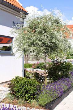 Gifts For The Outdoor Enthusiastics Garden Deco, Deck Lighting, Backyard, Patio, Life Design, Hanging Plants, Porch Decorating, Mykonos, Dream Garden