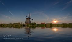 No The Only One by MichielBuijse. Please Like http://fb.me/go4photos and Follow @go4fotos Thank You. :-)