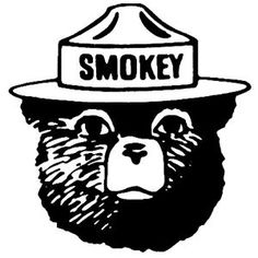 Smokey The Bears Forest Service And The Bear On Pinterest
