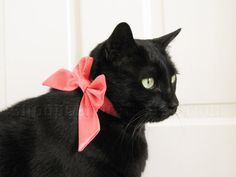 Lady Cat Bow  Choose Your Own Satin by SnoopCattyCatt on Etsy, $17.00