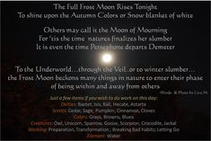 Some even see November as the end of the Celtic Year. If you do work on this day; here are just a few tools & items to consider. and your path is your own; New Moon Rituals, Full Moon Ritual, Medan, November Full Moon, Frost Moon, Moon Time, Moon Spells, Moon Magic