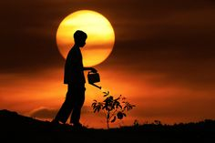 Amazing and creative Sunset Silhouette by Irving Lubis an artist and illustrator based from Yogyakarta, Indonesia. More Silhouette photography by Irving Lubis after the jump. Shadow Silhouette, Sunset Silhouette, Cool Pictures, Cool Photos, Beautiful Pictures, Pretty Photos, Amazing Photos, Silhouettes, Les Artisans
