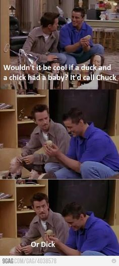 Chandler and Joey / Chick & Duck