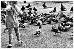 Esa, Mami. Cuando el Blanco y Negro favorece. Niña de la mano, con palomas. Fotos, Fotografías, Photos, Palomas, Paisaje Urbano, B&W, Blanco y Negro,