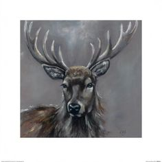 Stag Reprodukcje autor Louise Brown w AllPosters.pl