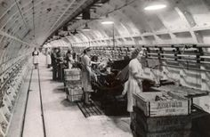London Underground Aircraft Factory. focused on getting aircraft component manufacturer Plessey working after having its factory leveled by German bombers in 1940. By 1942, it employed 4,000 workers on 30,000 square meters (300,000 sq ft) of factory floor space protected by the Earth itself. For four years, a predominately female workforce numbering in the thousands worked long hours in the often stifling conditions associated with what was most likely the world's narrowest factory ever built.