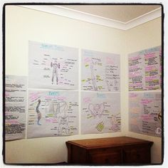 omgitstara has created a wall of posters to study from. Great work Tara!!