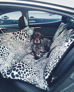 DIY Car Seat Hammock for a Dog. Protects your car and keeps your dog safe.