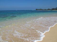 Beach day vibes / www.hobbstea.com #tropical #happiness #health #organic #refresh #revive #tea #hobbs #ocean #sand #hawaii