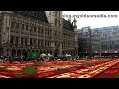 This Spectacular Flower Carpet Is Made From 700,000 Begonia Petals - Brussels Flower Carpet