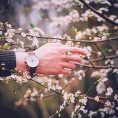 TRIWA CREATIVES - No winter lasts forever..Welcome spring! Pic by: @faded.photo