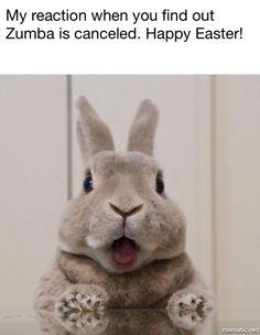 Zumba canceled..Easter holiday :)