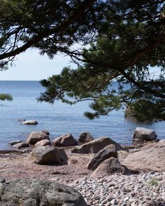 Great Photos, Cool Pictures, Stockholm Archipelago, Walking In Nature, Seaside, Coastal, Beautiful Places, Ocean, Island