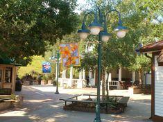 Estes Park Estes Park, Colorado, Lighting, Home Decor, Aspen Colorado, Decoration Home, Room Decor, Lights, Skiing Colorado