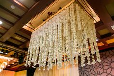 Chandelier of Orchid