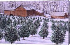Xmas Tree Farm Fine-Art Print by Dan Campanelli at CanvasGalleryArt.com