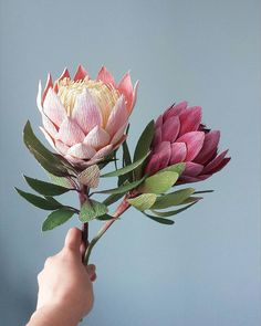 Image may contain: plant, flower and nature How To Make Paper Flowers, Tissue Paper Flowers, Giant Flowers, Paper Flowers Diy, Paper Roses, Fake Flowers, Handmade Flowers, Flower Crafts, Crepe Paper Flowers Tutorial