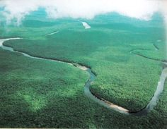 """The Orinoco river. Venezuela is categorised as one of the world's seventeen """"mega bio-diverse"""" countries (wikipedia.org)"""