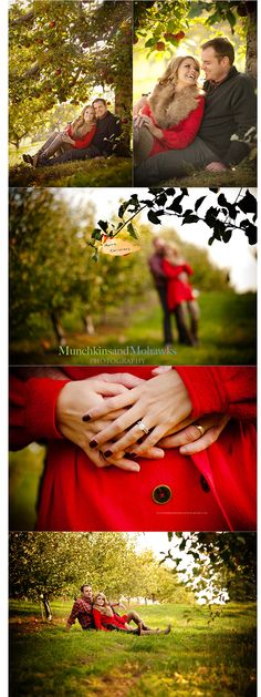 These are Christmas photos, but I love the idea of doing a photoshoot in an apple orchard.