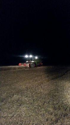 Late night harvesting