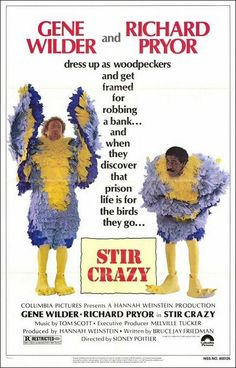 "Gene Wilder and Richard Pryor always made a great comedy team, and""Stir Crazy"" is no exception. Description from moviesdvdnewreleases.com. I searched for this on bing.com/images"