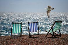 Espreguiçadeiras, Mar, Praia, Beira Mar, Gaivota, Verão