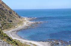Scenic South Coast by 4WD, a ruggedly beautiful coastline ~ outside of Wellington, New Zealand